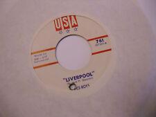 Vice Roys Liverpool/Tonk 45 RPM USA Records EX [R&R/Garage Istrumental]
