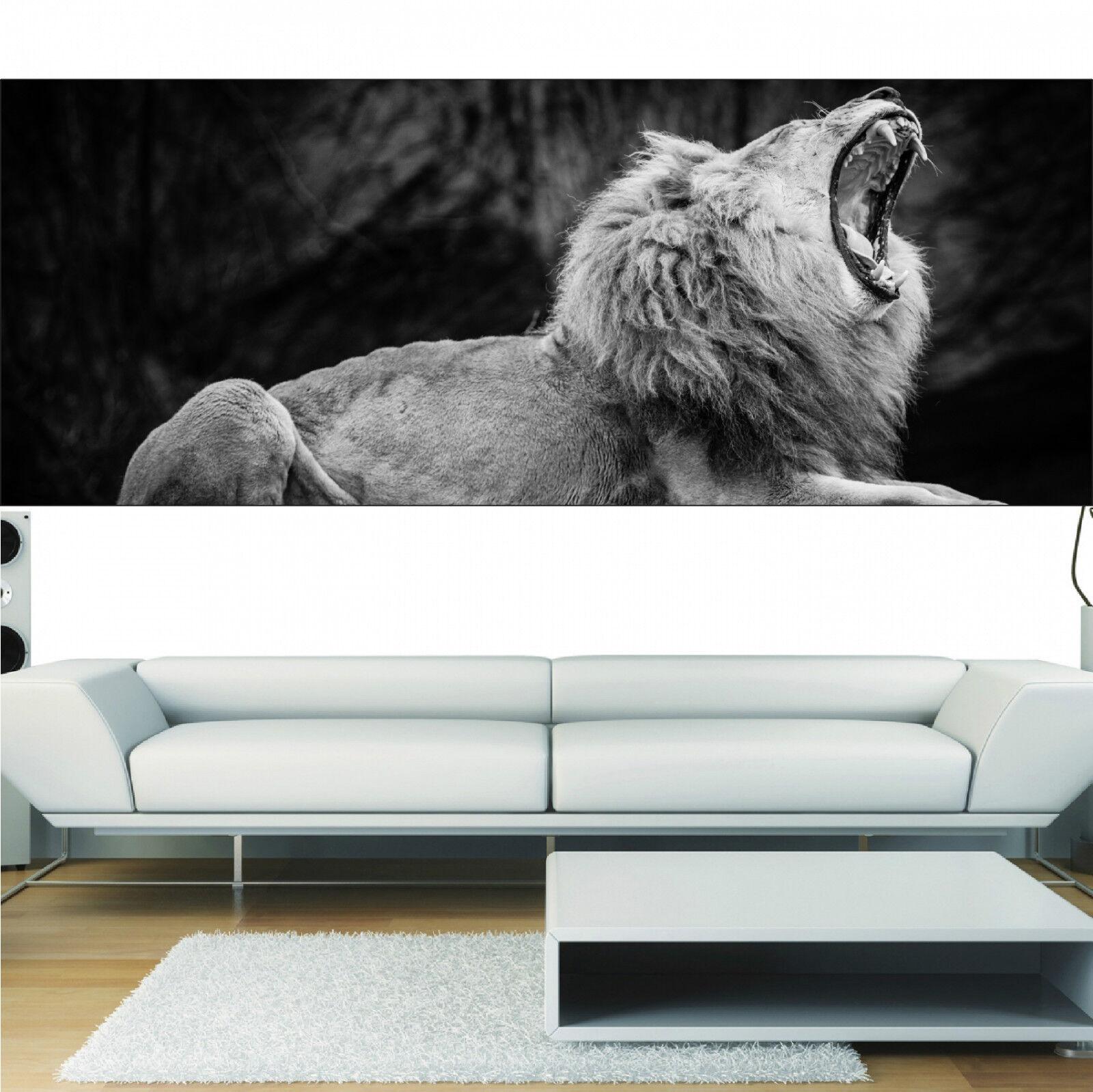 Aufkleber Panorama Deko Löwe die Brüllt black & white Ref 3661 (13 Größe)