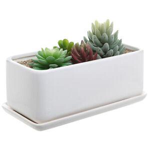 10 Inch Rectangular Minimalist White Ceramic Succulent
