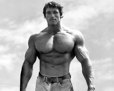 "02 Arnold Schwarzenegger - Bodybuilder Mr Olympia Universe 18""x14"" Poster"