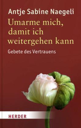 Umarme mich, damit ich weitergehen kann von Antje S. Naegeli (2013, Taschenbuch)