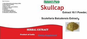 Skullcap-root-Extract-Powder-98-Baicalin-Scutellaria-Baicalensis-ANXIETY