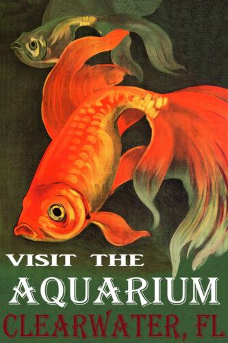 VISIT THE AQUARIUM CLEARWATER FLORIDA GOLDFISH FISH TRAVEL VINTAGE POSTER REPRO