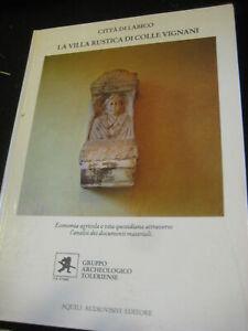 LIBRO-CITTA-039-DI-LABICO-LA-VILLA-RUSTICA-DI-COLLE-VIGNANI-1986