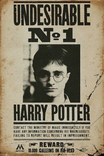HARRY POTTER ~ UNDESIRABLE No. 1 MUGSHOT ~24x36 MOVIE POSTER Wanted
