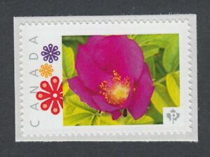 WILD-ROSE-Picture-Postage-stamp-MNH-Canada-2014-p8fL3-3