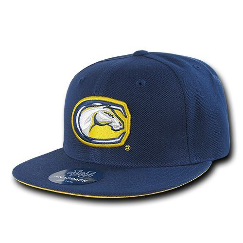 University California UC Davis Aggies NCAA Fitted Flat Bill Baseball Cap Hat
