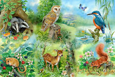 The House Of Puzzles - 250 BIG PIECE JIGSAW PUZZLE - Nature Study Big Pieces