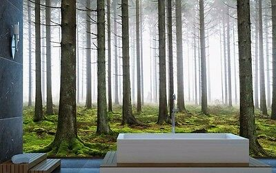 Pine Forest 12' x 8' (3,66m x 2,44m)-Wall Mural