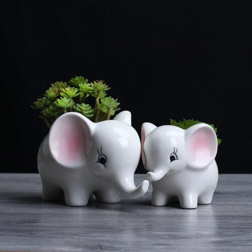 Cute Elephant Flower Pot//White Ceramic Succulent Planter Pots Home Garden Decor