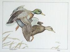 Dennis Burkhart Pennsylvania Ducks Unlimited Signed Limited Edition Print 1982