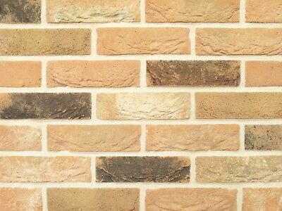 Handform-verblender Nf Bh899 Toscana Rot-bronce-bunt Klinker Vormauersteine Hochglanzpoliert Fassade