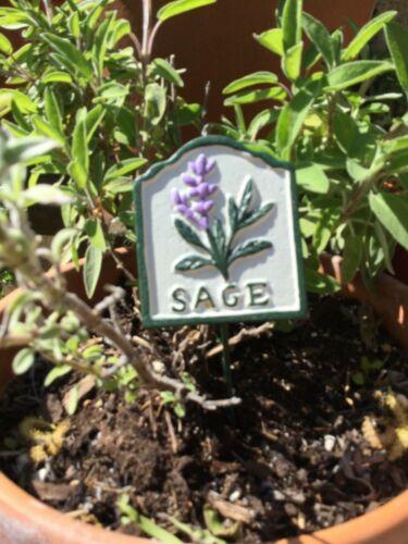 En fonte peinte à la main Jardin Herb Markers enjeux Signes 4 Jardin//alotment