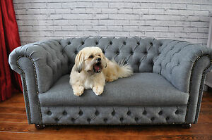 Fantastic Dogs Sofa Bed In Chesterfield
