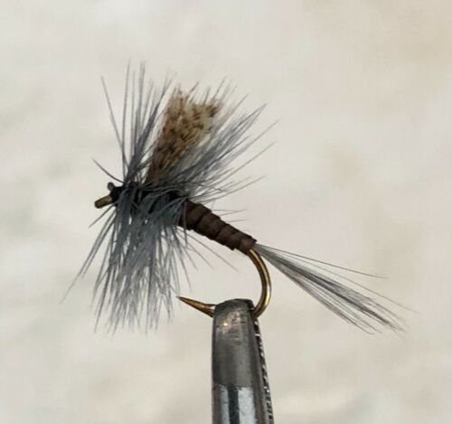 QUILL GORDON DRY FLY FISHING FLIES 12 FLIES X SIZE #16