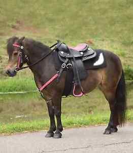 Komplett-Set-Pony-Westernsattel-THINK-PINK-Zaum-u-Vorderzeug-pink-Strass