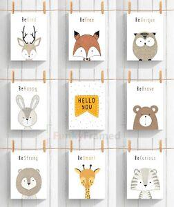 Coucou-Animal-Safari-Imprime-Enfants-chambre-Nursery-Baby-Boy-Girl-Decor-mur