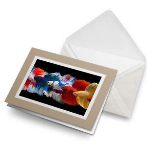 Greetings-Card-Biege-Siamese-Fighting-Fish-Tropical-21923
