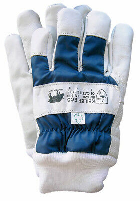 QualitäT Neu Ausgezeichnete 1606211 12 Paar Keiler-forst Winter Eco Blue Forsthandschuh Cat.ii Gr.10,5 In