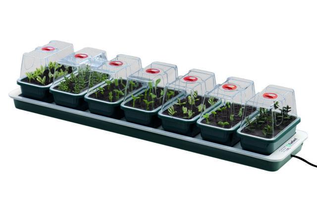 Garland Electric Heated Windowsill Propagator 3 Trays
