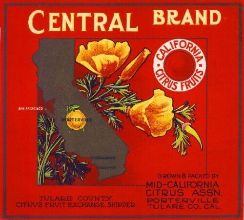 Porterville Central California Poppies Orange Citrus Fruit Crate Label Art Print