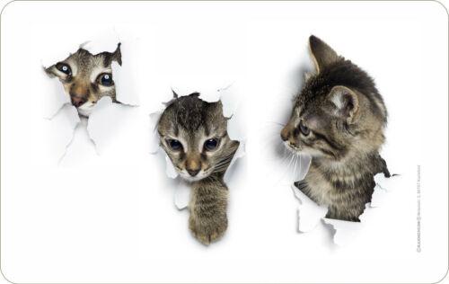 Geschenk Brett Katzenkinder Katzen-Babys Frühstücksbrett Schneide-Brettchen