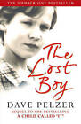 The Lost Boy: A Foster Child's Search for the Love of a Family by Dave Pelzer (Paperback, 2001)