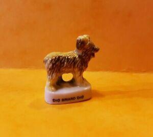 Tonkabohnen-Hund-der-Briard-3616