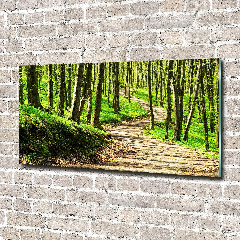Glas-Bild Wandbilder Druck auf Glas 140x70 Deko Landschaften Pfad im Wald