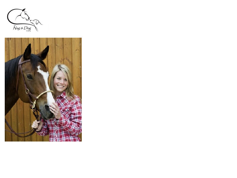 HKM Western Sidepull Bitless Leather & Rawhide Bridle Natural Horsemanship