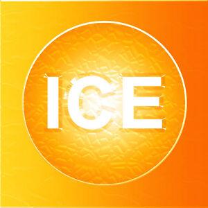 IceOrange.com Ice Orange! Zesty Pronounceable Brandable Two Word Domain Name