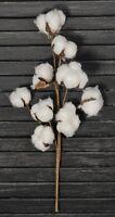 14 Cotton Boll / Ball Stem Spray Pick Branch - Farmhouse - 14 Bolls Per Stem