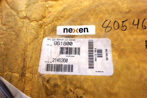 NEW NEXEN 961800 DPC11T REPAIR KIT