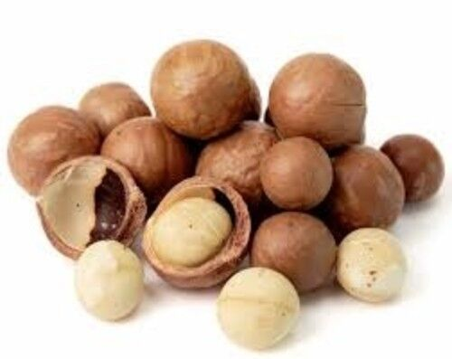 AUSTRALIAN-DRY-ROASTED-MACADAMIA-NUTS-IN-SHELL-1KG-FREE-OPENING-KEY