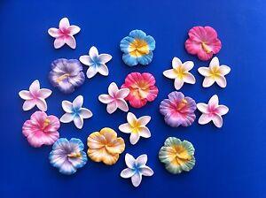 Shimmer-Edible-Hibiscus-Frangipani-Decorations-X12-Toppers-Hawaiian-Luau-Wedding