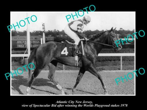 OLD 6 X 4 HORSE RACING PHOTO OF ATLANTIC CITY NEW JERSEY, SPECTACULAR BID 1978