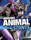 Amazing Animal Stunts by Lisa M. Bolt Simons (Paperback, 2015)
