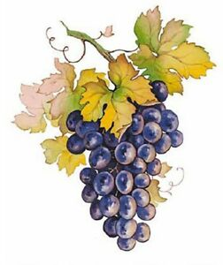 Purple-Grape-Cluster-Grapes-Select-A-Size-Waterslide-Ceramic-Decals-Bx