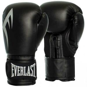Everlast-16oz-Pro-Style-Power-Training-Boxing-Gloves-in-Black-Silver