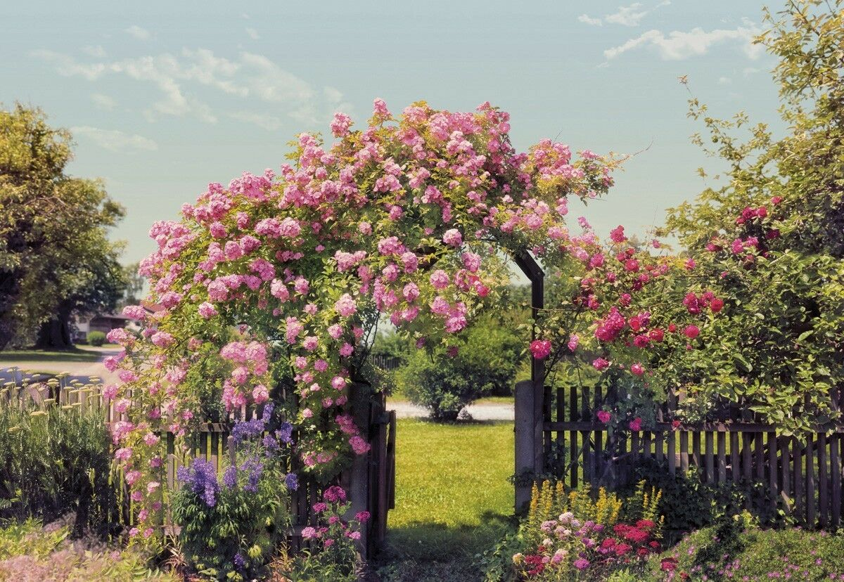 Wallpaper for bedroom Large photo wall mural Pink pinks garden wall art decor