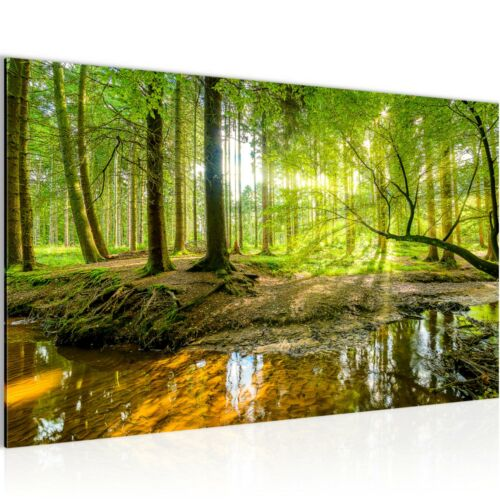 WANDBILDER XXL BILDER Wald Landschaft VLIES LEINWAND BILD KUNSTDRUCK 61171P