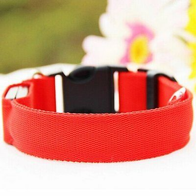 Unique LED Dog Night Safety Pet Flashing Light Adjustable Cat Nylon Collar Leash