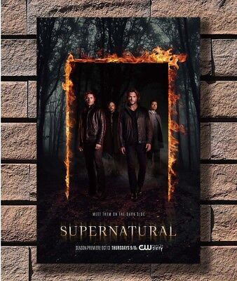 The Flash TV Show Poster Fabric 8x12 20x30 24x36 E-351