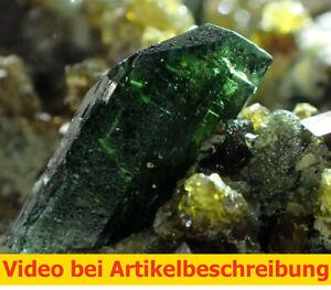 7524-Diopside-Vesuvianite-Grossular-ca-6-8-4cm-Tribal-AREA-Pakistan-1989-Film