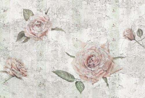 Vliestapete Fototapete TANTINET 368x248cm Rosen-Blüten als Fresko helle Blumen