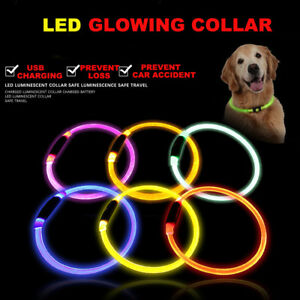 LED-Pet-Dog-Collar-USB-Rechargeable-Flashing-Lights-Waterproof-Night-Safety-Belt