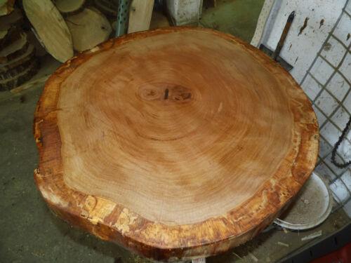 Eiche,geschliffen und geölt Wurmeiche,Tischplatte ca 70-75 x 5 cm Baumscheibe