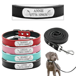 hundehalsband mit namen personalisiert katze hund halsband mit hundeleine leder ebay. Black Bedroom Furniture Sets. Home Design Ideas