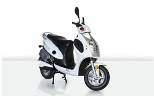 elektro roller scooter eh line es01 mit coc 45km h ebay. Black Bedroom Furniture Sets. Home Design Ideas