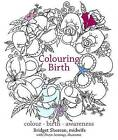 Preparing for Birth: Colouring Your Pregnancy Journey by Bridget Sheeran (Paperback, 2017)